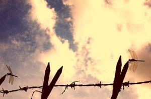 barbed_wire_clouds_tanakawho2